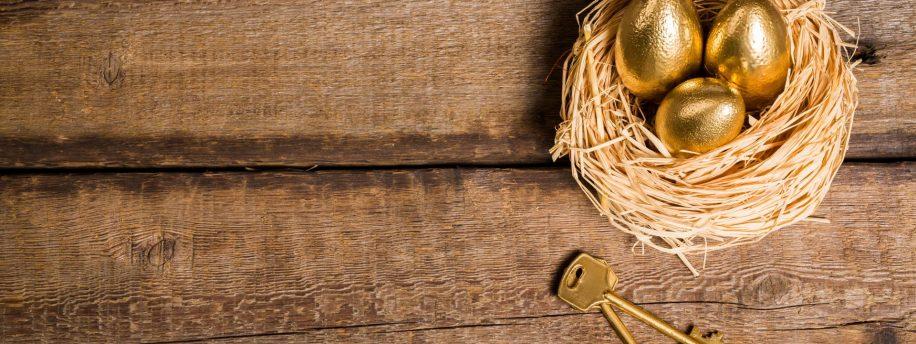 Willowlace News - Golden Eggs Header